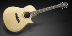 Framus FC 44 SMV - Vintage Transparent Satin Natural Tinted