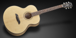 Framus FJ 14 SMV - Vintage Transparent Satin Natural Tinted
