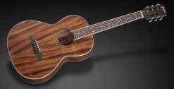 Framus FP 14 M - Natural Transparent Satin